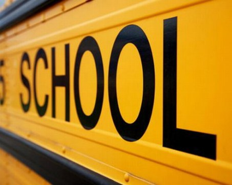 School Bus 12