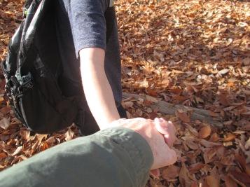 November 2015 hike hand holding